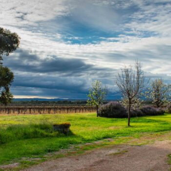 Spring Storm Rolls Across Angas Plains
