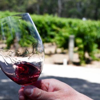 Tasting the vineyard